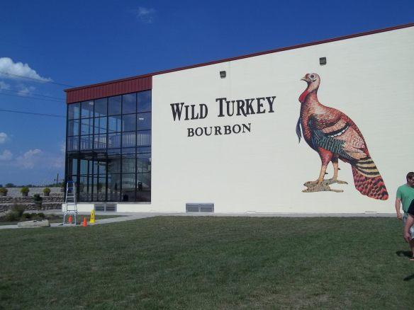 a wild turkey (1).jpg